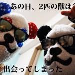 panda-renai-main