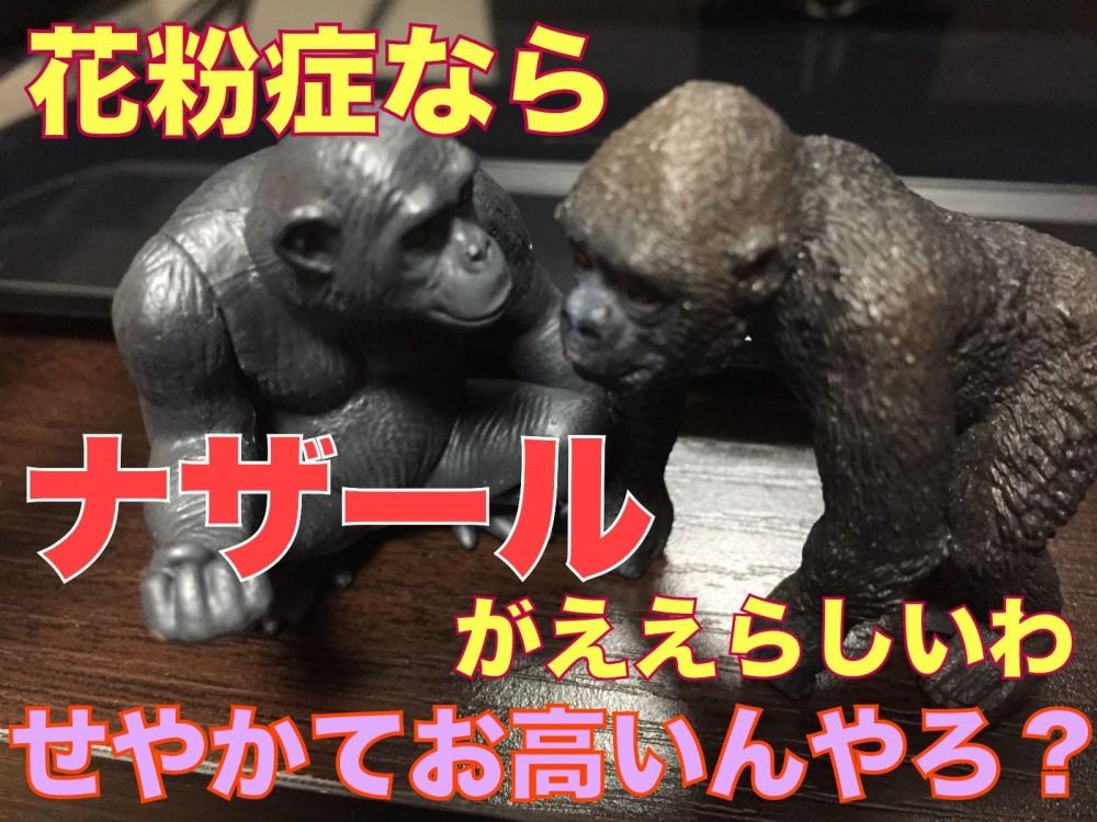 救世主?!花粉症対策におすすめグッズ『ナザール』とは?!