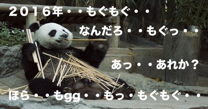 【パンダ嫁】豆腐メンタルな2016年を全力で振り返るの巻