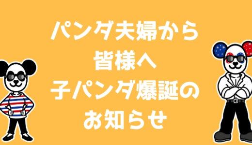 パンダ夫婦から皆様へ〜子パンダ爆誕のお知らせ編〜